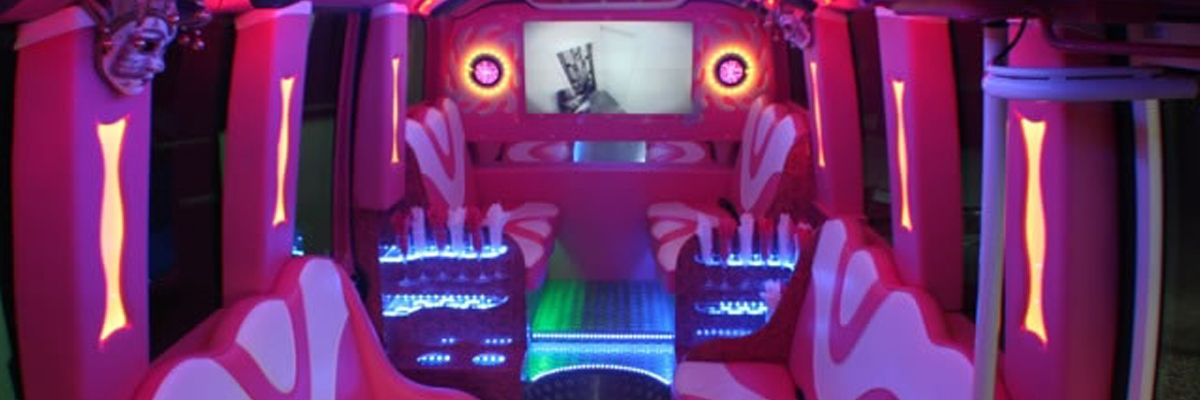 Pink Party Bus 2